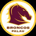PALAU BRONCOS XIII