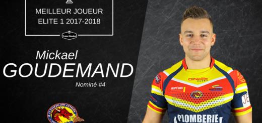 Mickael Goudemand - Meilleur joueur #4