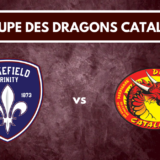 Groupe Wakefield Dragons Catalans